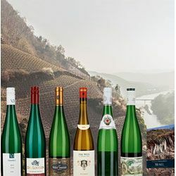 Weinedition »Mosel«